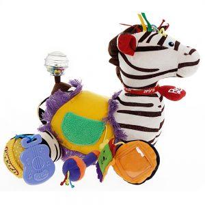 Zebra RYAN