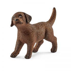 Zvieratko - šteňa retrievera