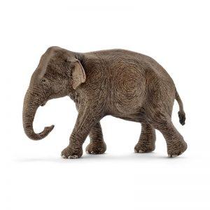 Zvieratko - ázijský slon samica