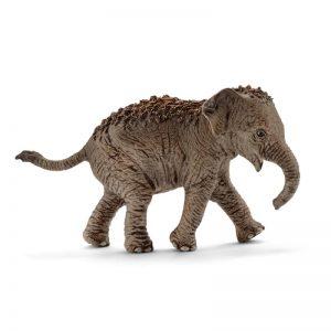 Zvieratko - ázijský slon mláďa