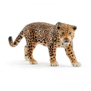 Zvieratko - jaguár