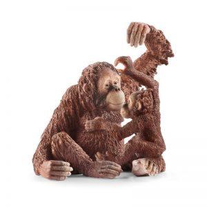 Zvieratko - samica orangutána