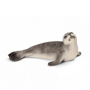 Zvieratko - tuleň
