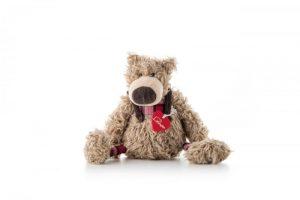 Medveď Jakob