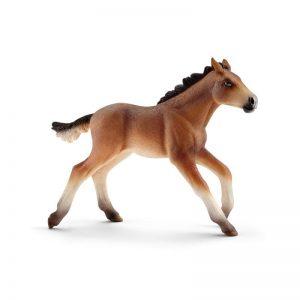 Zvieratko - žriebä Mustang